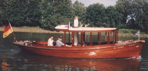 Steamboat Erpel - Picture 1
