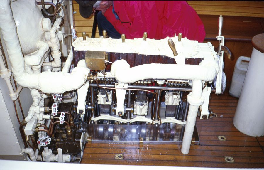 Steamboat Oesa - Picture 6