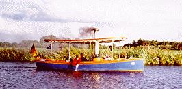 Steamboat Saphire - Picture 1